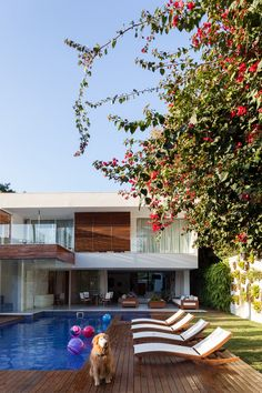 A casa de Gagliasso e Giovanna Ewbank
