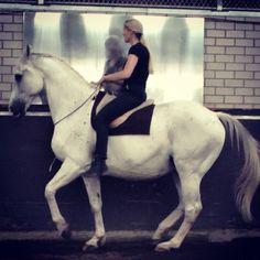 But an older horse is always the better match for a novice rider, because he is wise, confident and patient. And he has an excellent understanding of the movements required and is sympathetic to the learning rider's mistakes. He is even willing to offer correct responses for relatively correct aids.