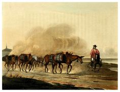Transporte de vino en convoy de mulas-Picturesque illustrations of Buenos Ayres and Monte Video..-1820- Emeric Essex Vidal. Cortesía: Cesar Ojeda, Las Palmas de Gran Canaria (España).
