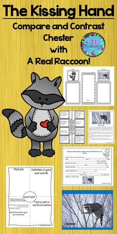 The Kissing Hand by Audrey Penn is a delightful story of a raccoon that is afraid of going to school. This activity uses paired texts to compare and contrast Chester with a real raccoon! Vocabulary Graphic organizers, Non-fiction printable of a raccoon, Kindergarten Teachers, Kindergarten Activities, Classroom Activities, September Activities, Learning Activities, Teaching Ideas, Vocabulary Graphic Organizer, Graphic Organizers, Classroom Hacks