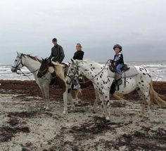 Ride horses on the beach in Corpus Christi Texas! We must do this every year for our 3 years here. Texas Vacations, Texas Roadtrip, Texas Travel, Vacation Places, Vacation Trips, Vacation Destinations, South Texas, Texas Usa, Texas Tour