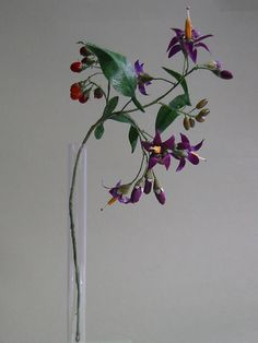 Woody Nightshade Such a Pretty Poison Paper Flower Art, Crepe Paper Flowers, Paper Flower Tutorial, Flower Crafts, Handmade Flowers, Diy Flowers, Unusual Flowers, Paper Plants, Paper Leaves