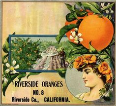 Riverside Oranges Orange Citrus Fruit Crate Label Advertising Art Print