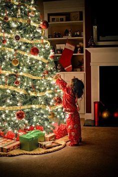 christmas tree and lights: