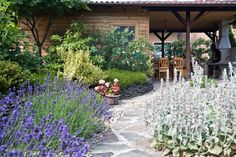 Záhrada, ktorá je plná života