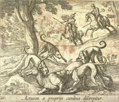 Image result for actaeon and the dogs