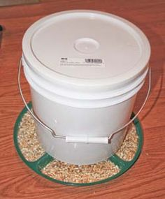 Build a chicken feeder on the cheep 2 1/2 gallon or 5 gallon bucket and dollar store relish tray.