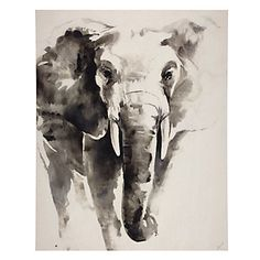Our large format Watercolor Elephant juxtaposes the stately and powerful African elephant with subtle and delicate monochromatic brushstrokes. $399.95 #ZGallerie