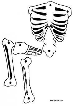 Printable halloween template   Halloween stencils and patterns - Skeleton 1