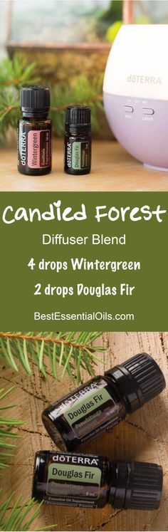 Candied Forest doTERRA Diffuser Blend
