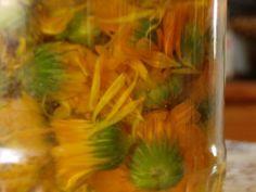 You searched for körömvirág - GyógyfüvesKertem Animal Birthday, Seaweed Salad, Herbalism, Ethnic Recipes, Plants, Witches, Alcohol, Herbal Medicine, Plant