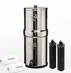 Big BK4X2 Countertop Water Filter 2 Black Elements and 2 PF 2Fluoride Filters