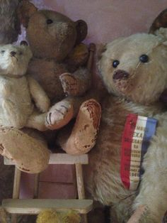 Some of my teds