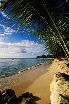 Barbados, Holetown, Coral Reef Club, beach / Photo ©David Sanger