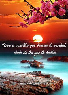 #verdad #frase #imagen #psicologia #flor #reflexion