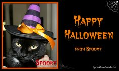 Happy Halloween from Spooky
