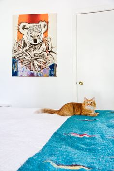 """Tasha's Colorful & Comfy Austin Home (& Backyard """"Beach Lodge"""" Studio). Winston's orange fur looks fetching with that turquoise Southwestern blanket on the bed!"""