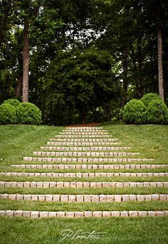 Green stairway flanked with American boxwood rounds. A Planters design… Formal Gardens, Outdoor Gardens, Garden Paths, Lawn And Garden, Landscape Design, Garden Design, Landscape Steps, Garden Stairs, Traditional Landscape