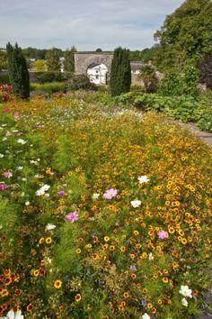 National.Botanic Gardens of Wales.