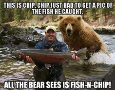 Look at My Big Fish! Why Are You Running Away? Bear Hunting Photobomb: This guy is in for a big surprise and will probably shit in his pants in 3 2 Rock Club, Tierischer Humor, Animal Pictures, Funny Pictures, Funny Pics, Random Pictures, Funny Stuff, Funny Fishing Pictures, Funny Images