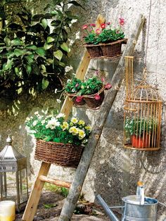Flower baskets added to an old ladder!
