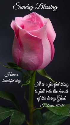 Sunday blessing~~j~ hebrews Happy Saturday Morning, Sunday Morning Quotes, Happy Sunday Quotes, Sunday Love, Morning Thoughts, Greetings For The Day, Sunday Greetings, Morning Greetings Quotes, Good Night Blessings