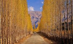 See the most stunning, must-visit cultural, historical and tourist spots in Pakistan you must visit. Pakistan has filled with all major resources, whe. Pakistan Tourism, Pakistan Travel, Tourist Places, Tourist Spots, Beautiful Roads, Beautiful Places, Tanzania, Road Painting, Gilgit Baltistan