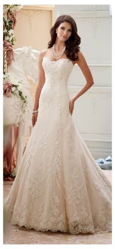Mon Cheri Wedding Dresses, Best Wedding Dresses, Bridal Dresses, Wedding Gowns, Wedding Blog, Wedding Ideas, Lace Wedding, 50s Wedding, Modest Wedding