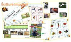 Le Petit Prince : cahier d'exercices