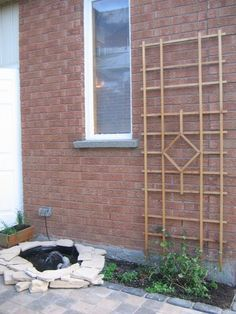 spring forward build a trellis and privacy screen, gardening