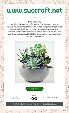 www.succraft.net