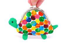 #coinpurse #turtle