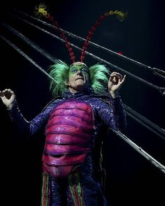 An insect love story. Cirque du soleil: Ovo