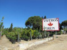 Instalaciones de Viveros Irún con todo tipo de #plantas y #árboles para los amantes de la #jardinería www.viverosirun.es