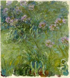 Claude Monet - Agapanthus  entre 1914 e 1926  Museum of Modern Art (New York