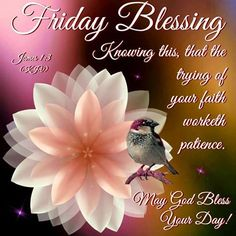 Friday Blessing, James 1:3- May God Bless Your Day!