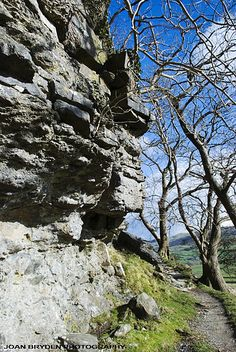 Nappa Scars, Austwick, Yorkshire Dales National Park, North Yorkshire, England