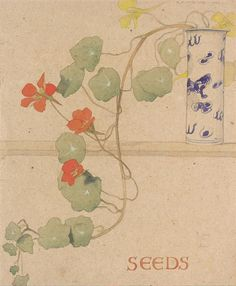 Find artworks by Maxwell Ashby Armfield (British, 1881 - on MutualArt and find more works from galleries, museums and auction houses worldwide. Botanical Illustration, Botanical Prints, Illustration Art, Plant Fungus, Sgraffito, Arts And Crafts Movement, Summer Art, Watercolor Flowers, Flower Art
