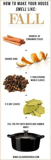 How to make your house smell like FALL: Add cinnamon sticks, some orange peel…