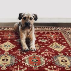 Protect your floors from spills, skids, and scratches with one removable Rug Cover and one cushioned non-slip Rug Pad. This innovative technology makes it possible for small and large area rugs to be washed as easily and frequently as bedding, leaving your entire living space looking, smelling, and feeling clean!   With RUGGABLE, rug cleaning is easy as 1…2…3!  Removable, Washable, Reusable!  #Rugs