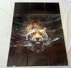 "Tiger - Tile Mural 12 tile mural on 6"" tiles at £168 Digitally reproduced for tiles and depicts a Tiger swimming. Images of big cats on tiles are great to use as a part of your kitchen splashback tile project or your tub and shower surround bathroom tile project. Pictures of big cats on tile make a great kitchen backsplash idea and are excellent to use in the bathroom too for your shower tile project."