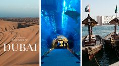 What to see and do in Dubai - nature, gastronomy, culture, food and shopping...