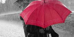 Hi friends,Good morning. Today is a cloudy weather. and slowly rain comes down......