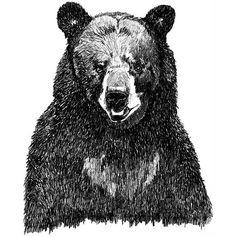 http://twooneelephant.com  imagenarium:  bear drawing by Corella Design.