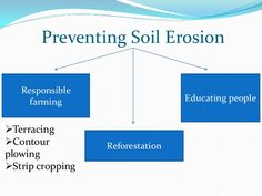 ways of preventing soil erosion reforestation - Google Search