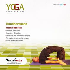 yoga and health  yoga facts easy yoga workouts learn