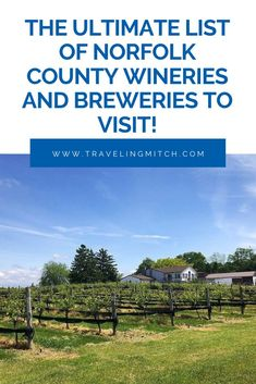 It's hard for me to think of an Ontario wine region that is emerging faster than Norfolk County. Here are tips and advice for creating a Norfolk, Ontario wine and beer tour! #ontariotravel #winetravel #beertravel #norfolkcounty Travel Articles, Travel Advice, Travel Photos, Norfolk County, Ontario Travel, Travel Oklahoma, Short Trip, New York Travel, Discount Travel