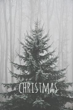 Christmas - Navidad  #DILOCONFRASES #xmas #navidad #nieve