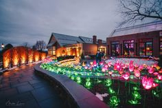 Tower Hill Botanic Garden provides a unique holiday party experience. Delicious cuisine coupled with their annual light show makes for a one-of-a-kind celebration. Retirement Parties, Social Events, Winter Garden, Bat Mitzvah, Event Venues, Botanical Gardens, Holiday Parties, Outdoor Living, Bridal Shower