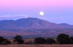 Lunar eclipse over the Sonoran Desert, Arizona - Norma Jean Gargasz/Alamy